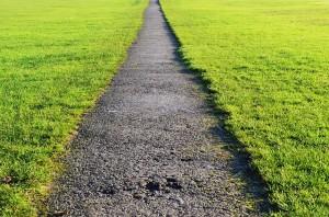 path-19555_640